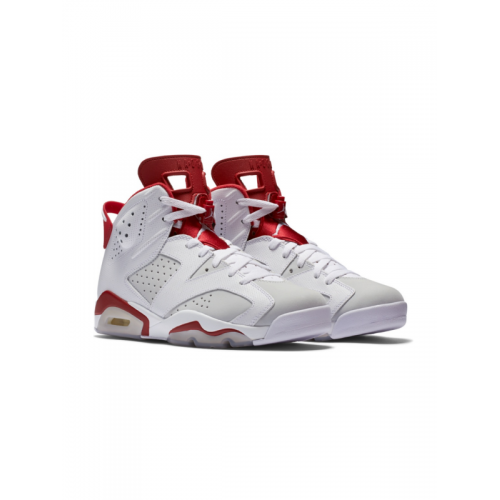 Air Jordan 6 Retro 'Alternate '91' 384664-113